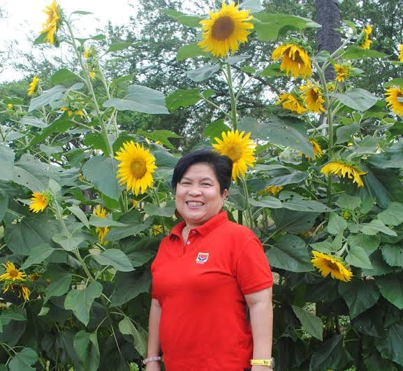 Dinky Soliman